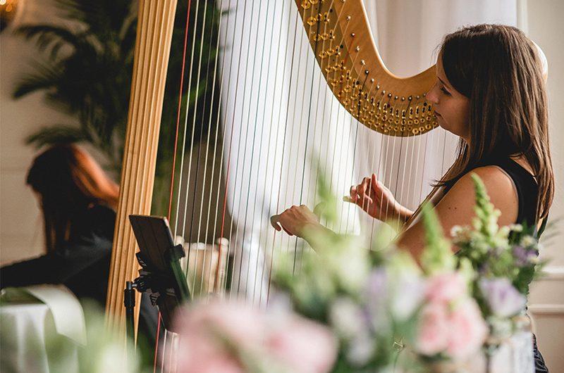 Insta Harpist